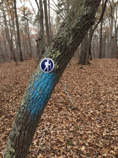 At some locations the trail is blazed with round blue markers with an icon of a hiker