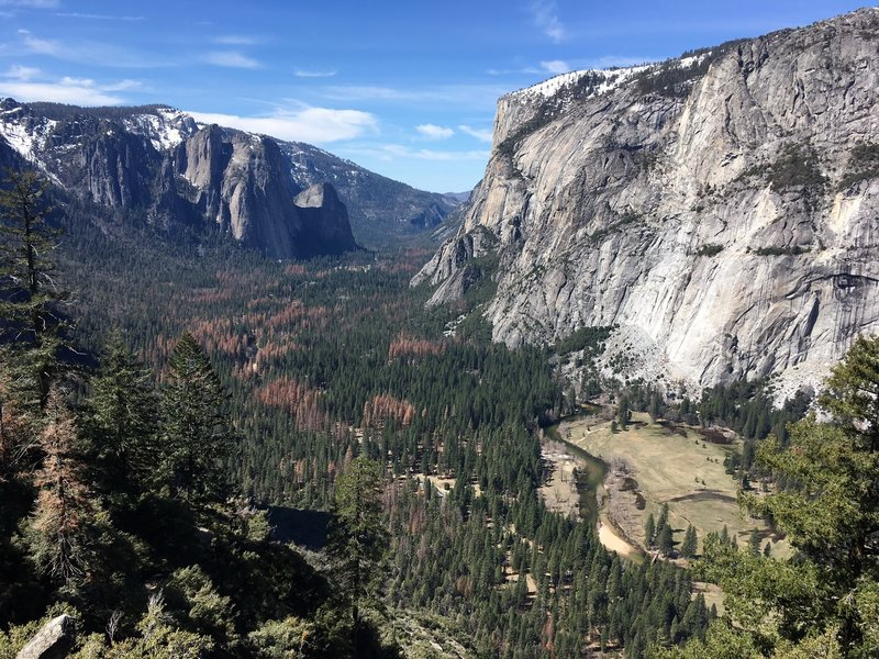View from the Four Mike Trail