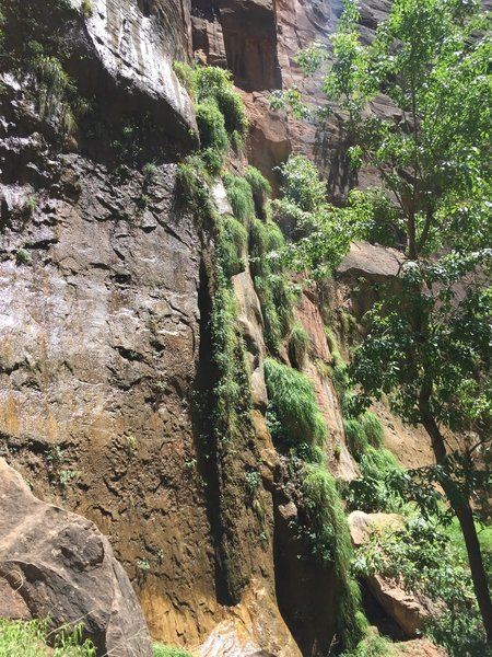 Sidewalls leading to the Narrows