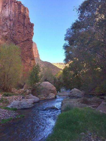 Aravaipa Creek looking west