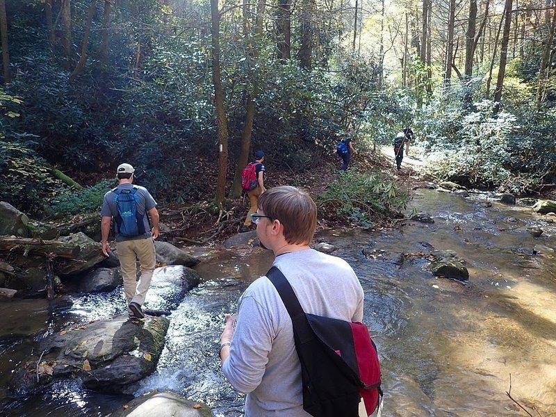 Green River Game Lands Loop 1 Running Trail Dana North Carolina