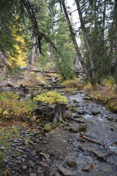 Big Falls Creek at Trailhead
