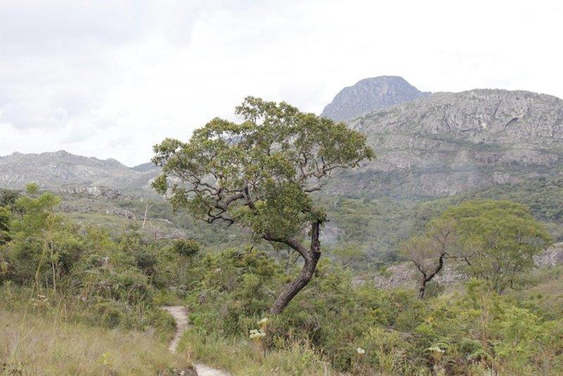Trail to Tempo perdido waterfall and Itambe peak behind