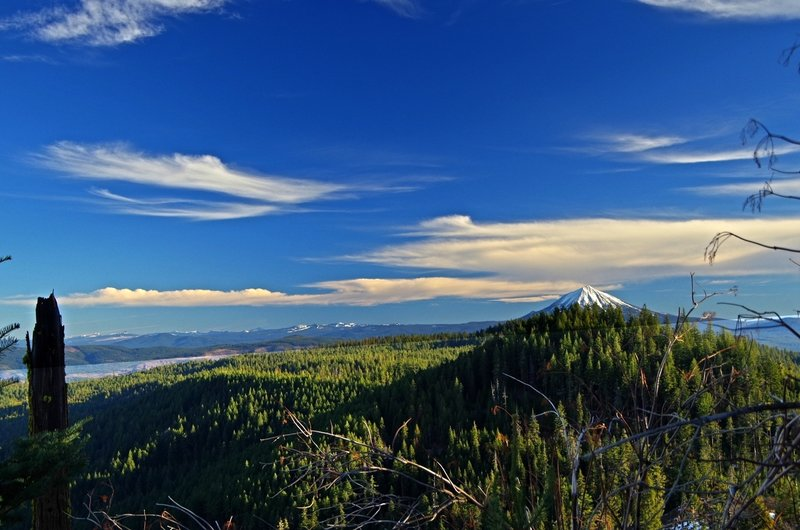Mount McLoughlin from the trailhead