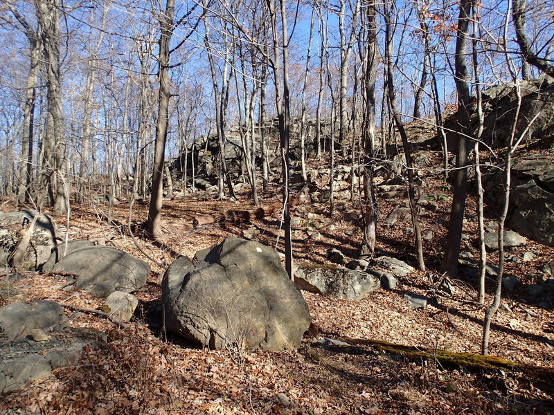 Access point to Four Birds Trail from Split Rock Road