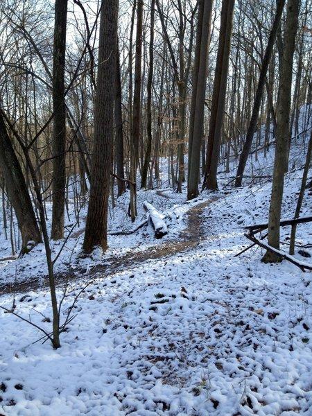 Thunderbunny Trail after a light snow.