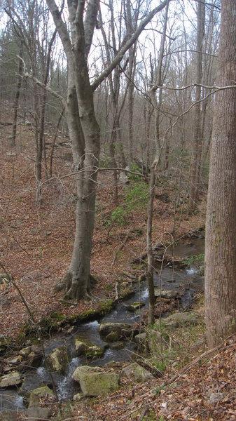 Stover Creek