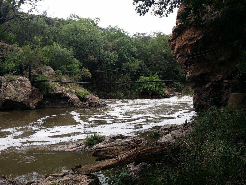 A view of the Krokodilberg trail hanging bridge.