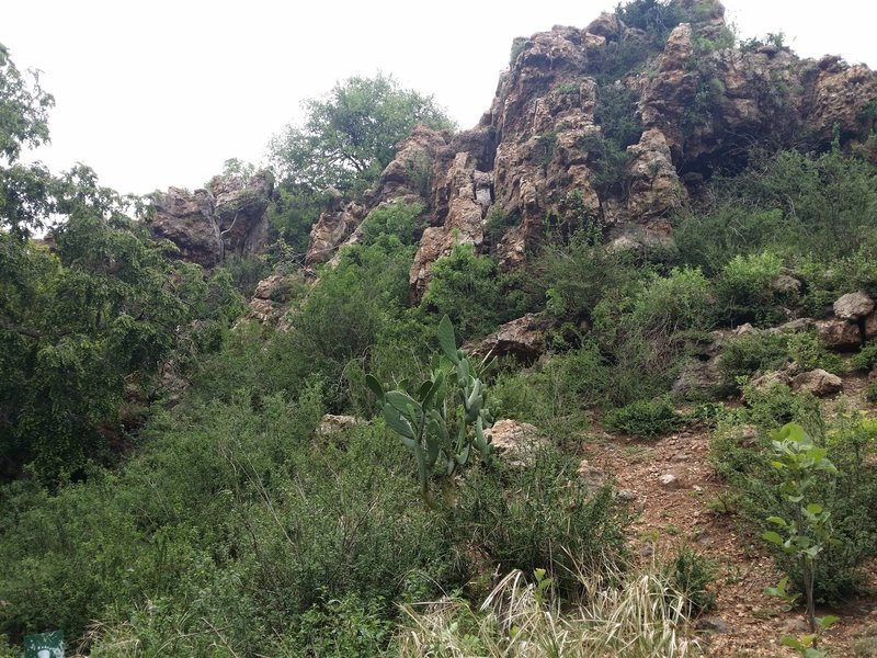 A view of the Krokodilberg trail hospital cave rock face.