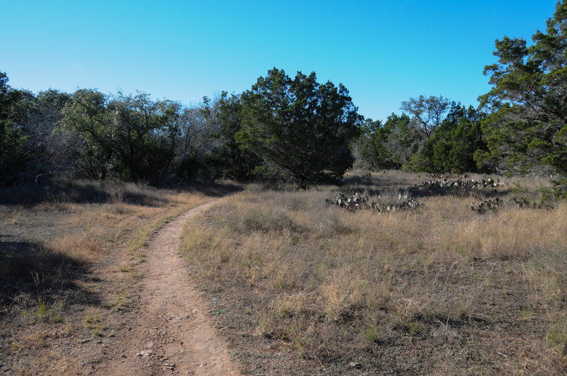 A typical scene along the Pack Trail