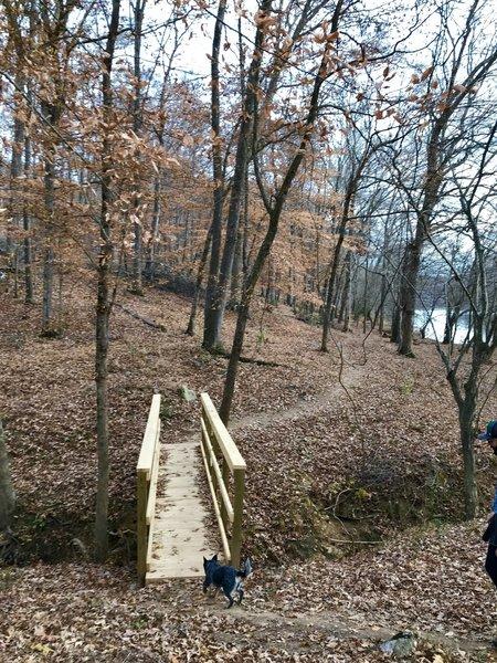 Creek crossing along the trail