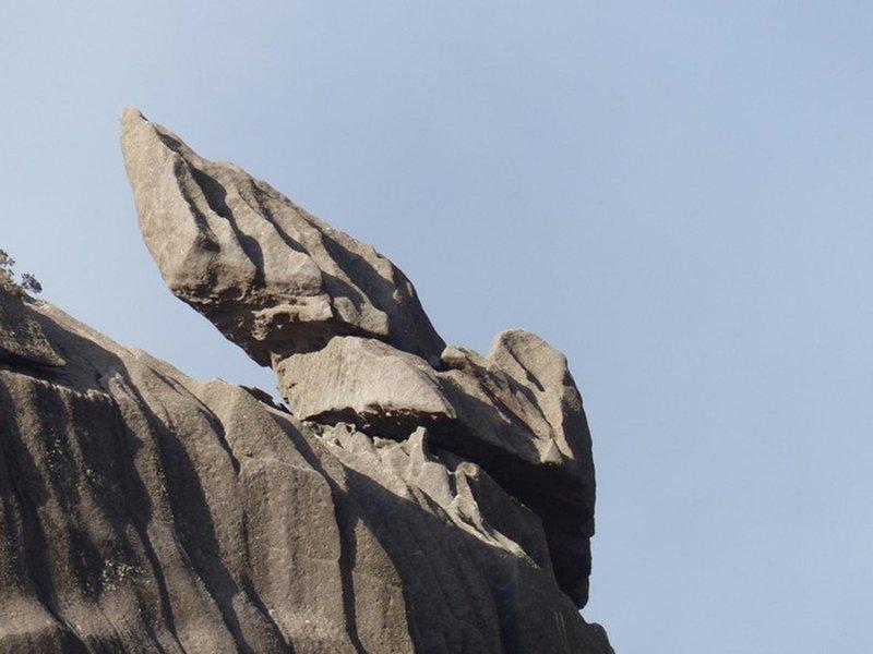 Hermes wings rock