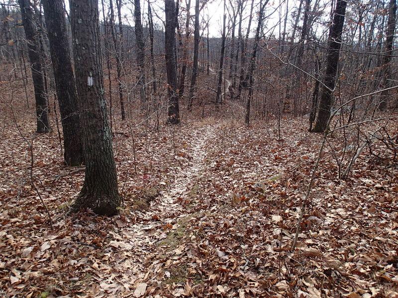 Four Birds Trail