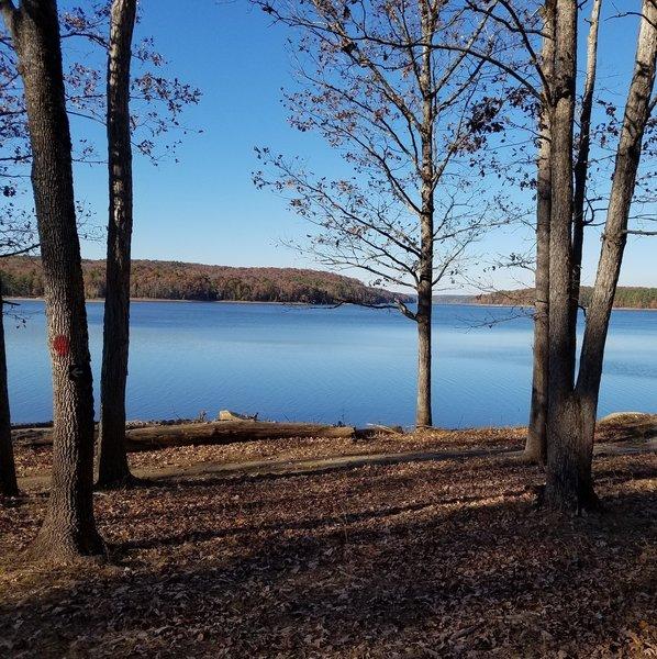 A view of Jordan Lake from Poe's Ridge Trail.