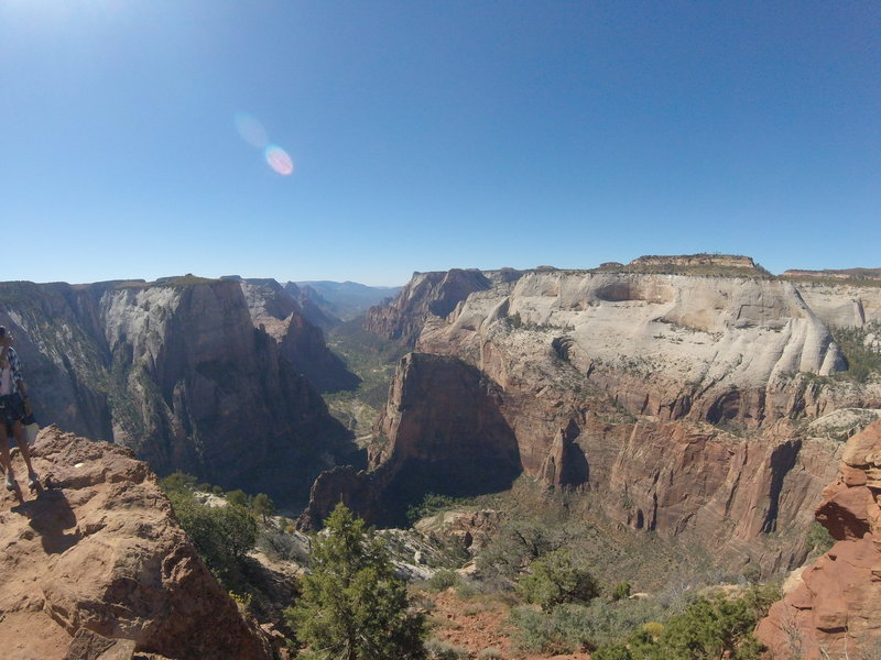 Observation Point - Zion National Park