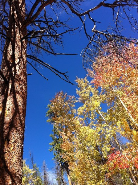 Grand Lake CO 2013