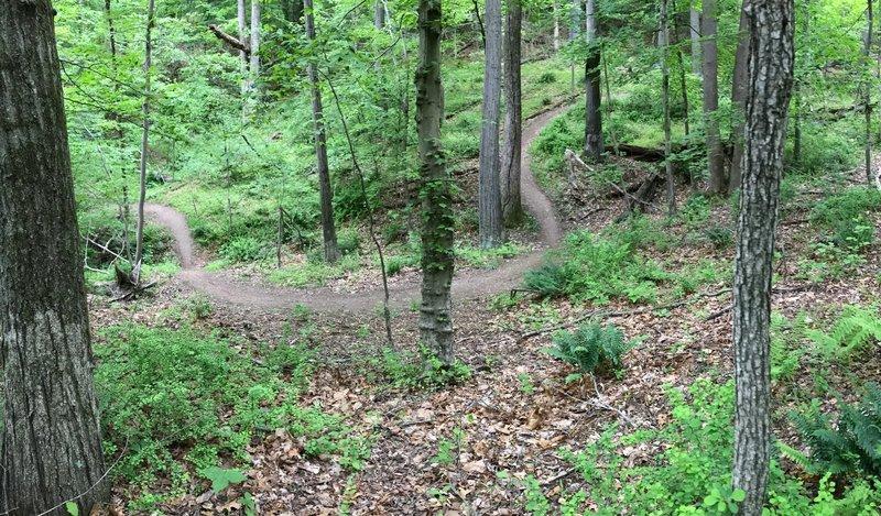 Rusty Trombone trail.