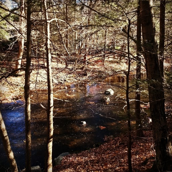 A great view of the Mianus River.