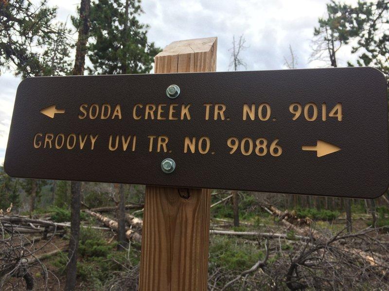Soda Creek and Goovy Uvi intersection