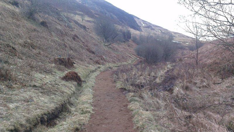 Conic Hill Trail