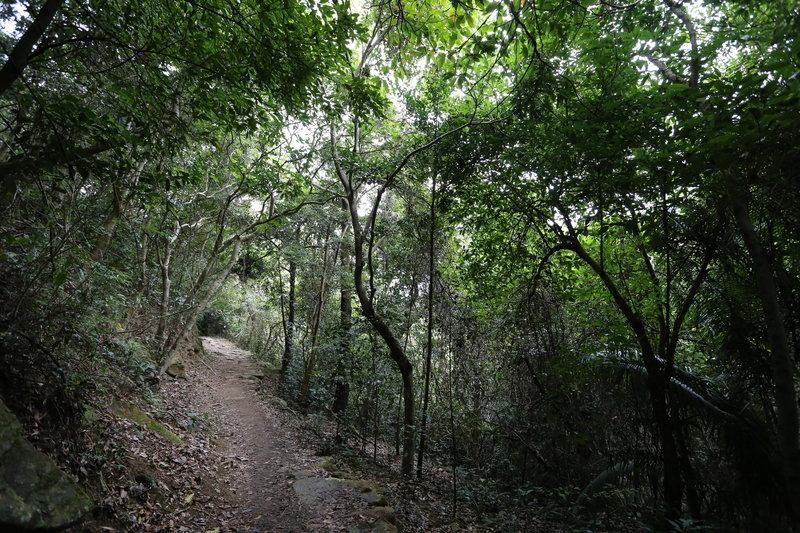 Pat Sin Leng Country Park