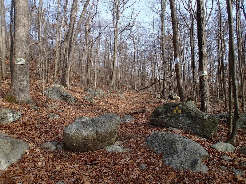 Trailhead for Bearfort Waters Clinton Trail
