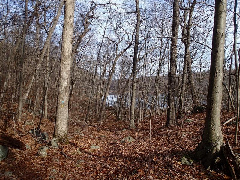 Bearfort Waters Clinton Trail