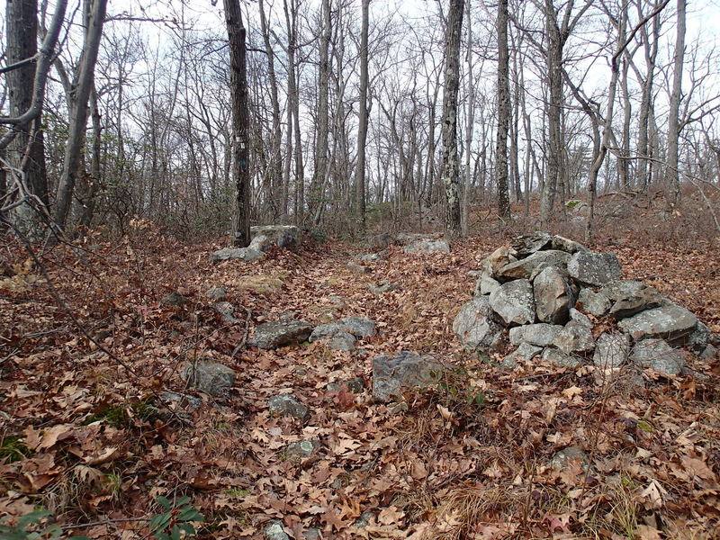 Clinton West Trail and Highlands Trail junction