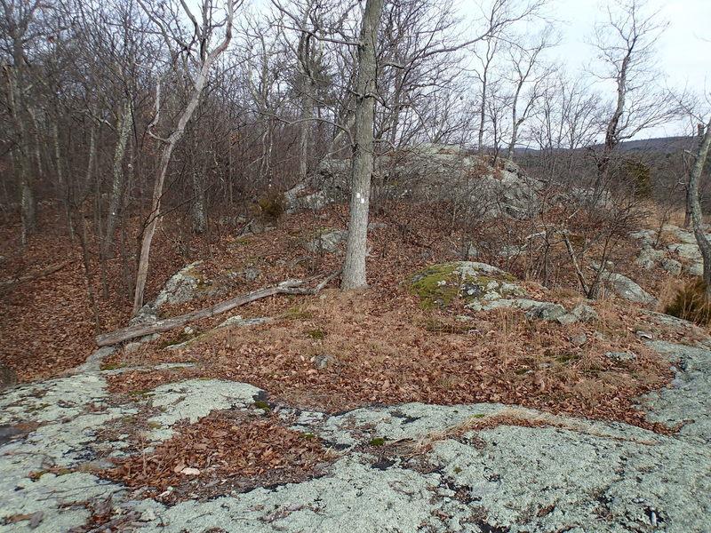 Clinton West Trail
