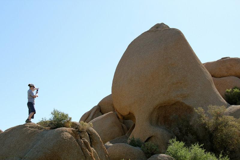 Mar and Skull Rock near Jumbo Rocks