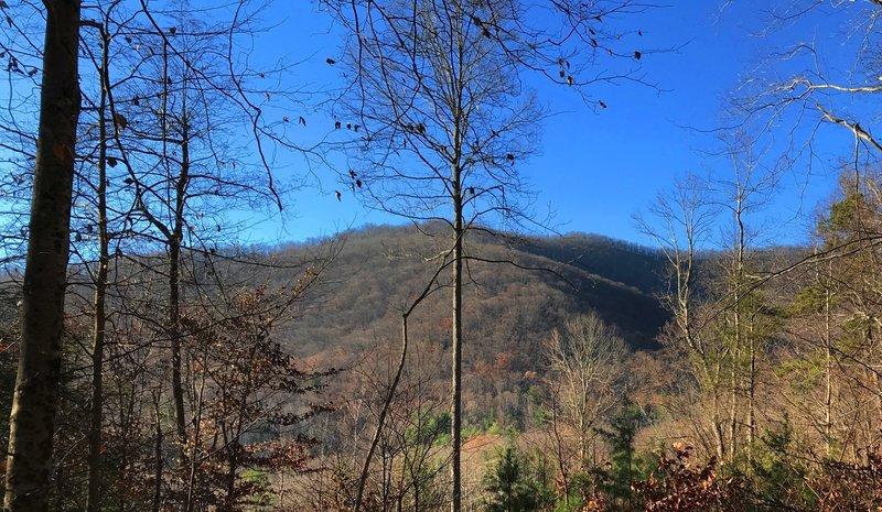 Bare winter hills