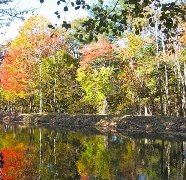 Fall Colors at Mine Falls