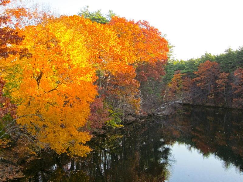 Along the Nashua River at Lincoln Park