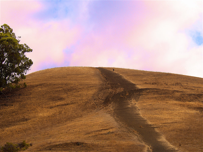 Steep going on the grassy slopes.
