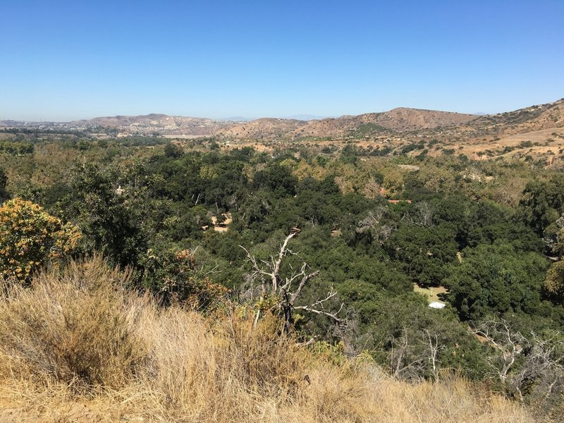 View from shaded rest area on Horseshoe Loop (from south side of park)