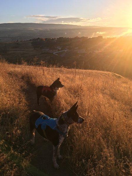 Early morning sunburst with a sneak peak of Wenatchee