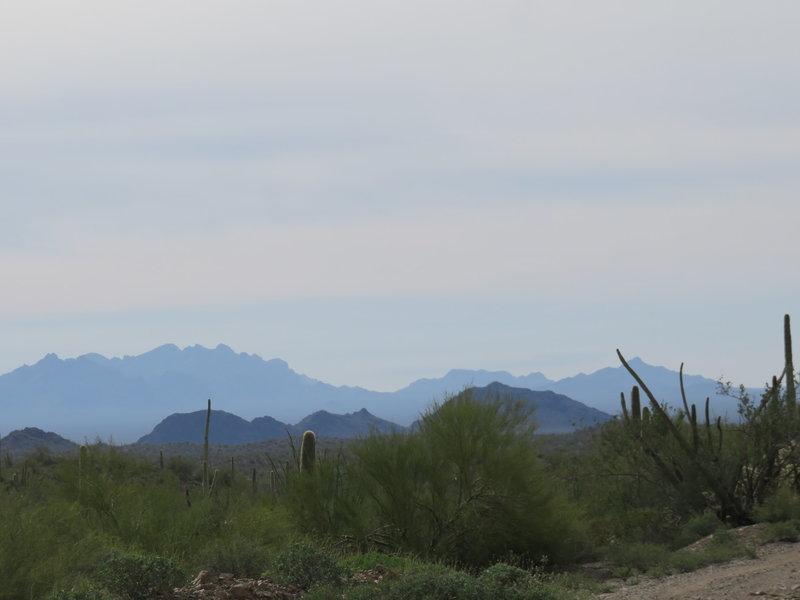 Ajo Mountain range