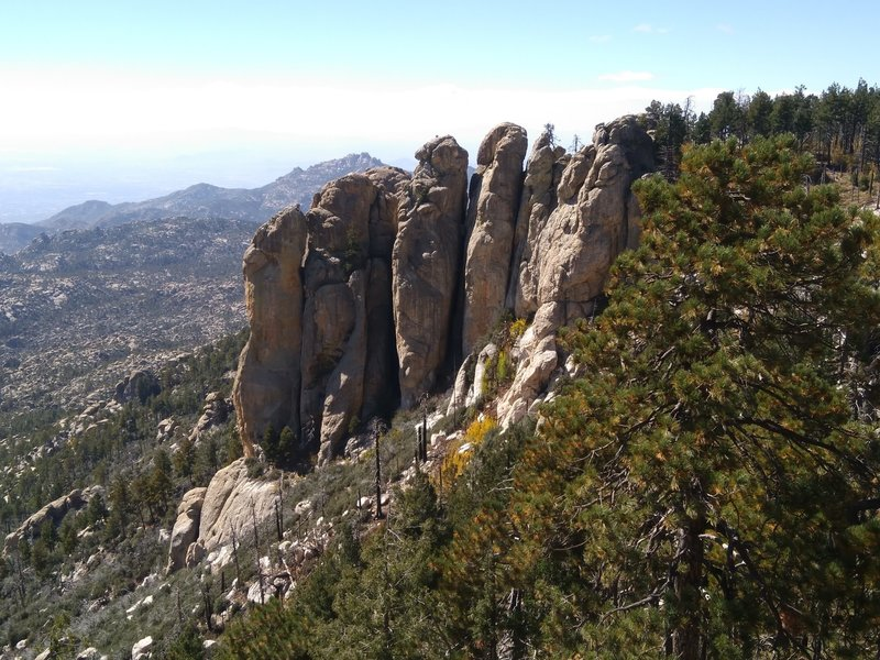 The Ravens from Mt Lemmon Trail #5