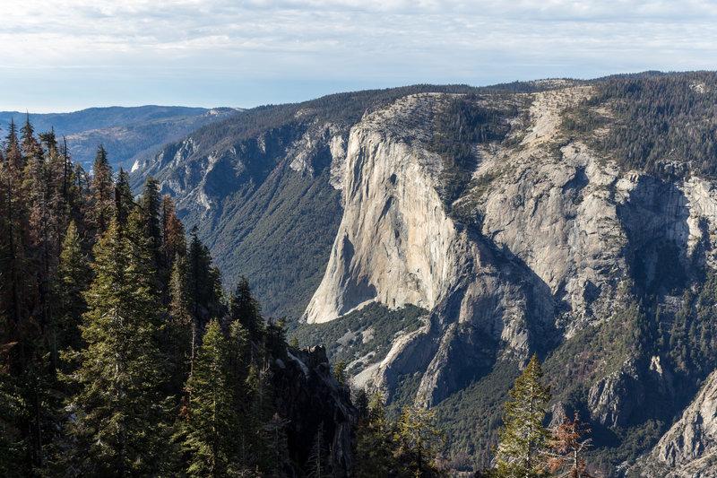 El Capitan from Pohono Trail