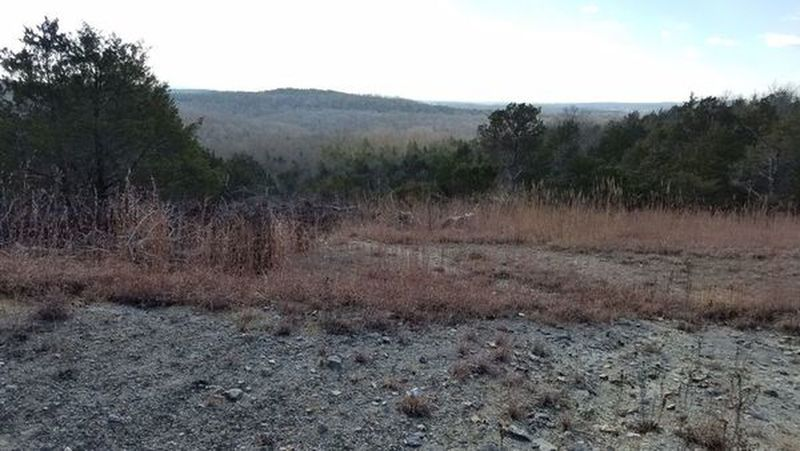 At the top of the 'bald knob' overlook area.