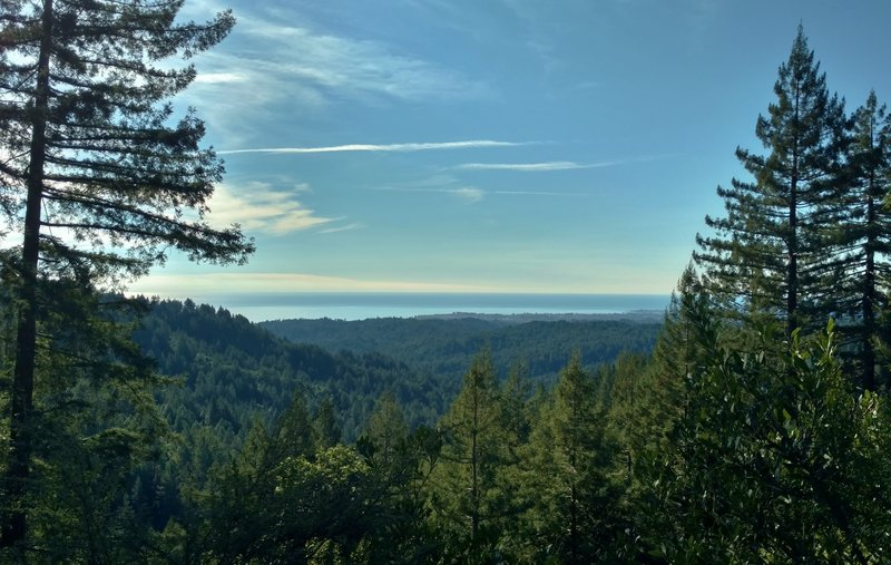 Looking past the redwoods to the Pacific Ocean in the distance, from Sand Point Overlook