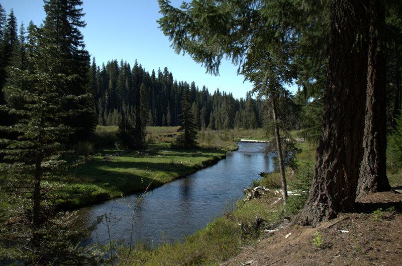 Along Muir Creek