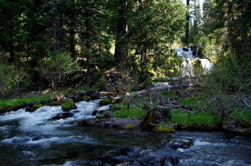 The cascade on the East Fork of Muir Creek