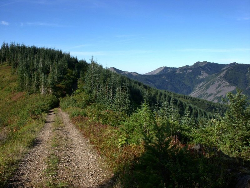 Along the old road, Silver Star Mountain on the horizon