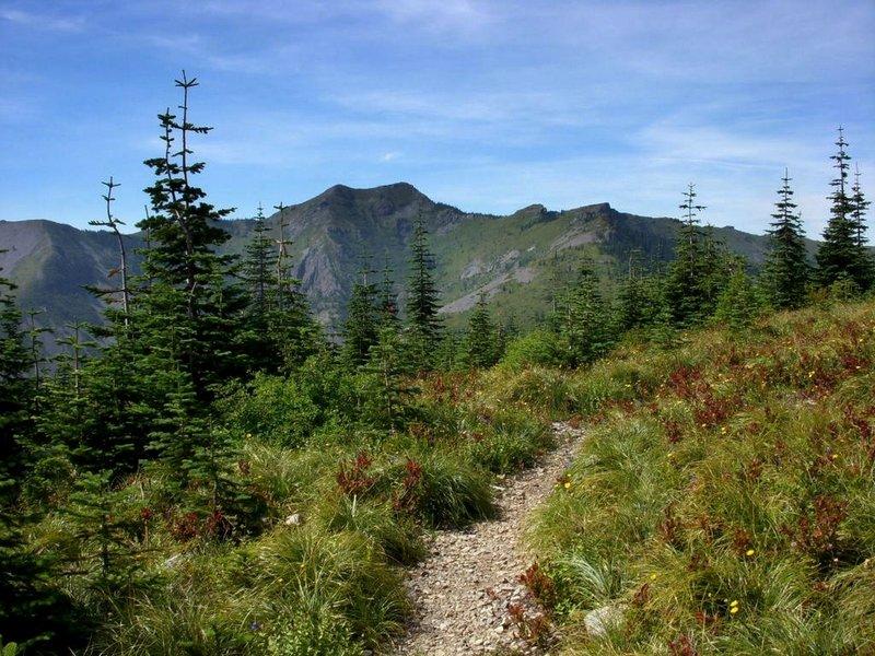 Along the Bluff Mountain Trail, Silver Star Mountain on the horizon