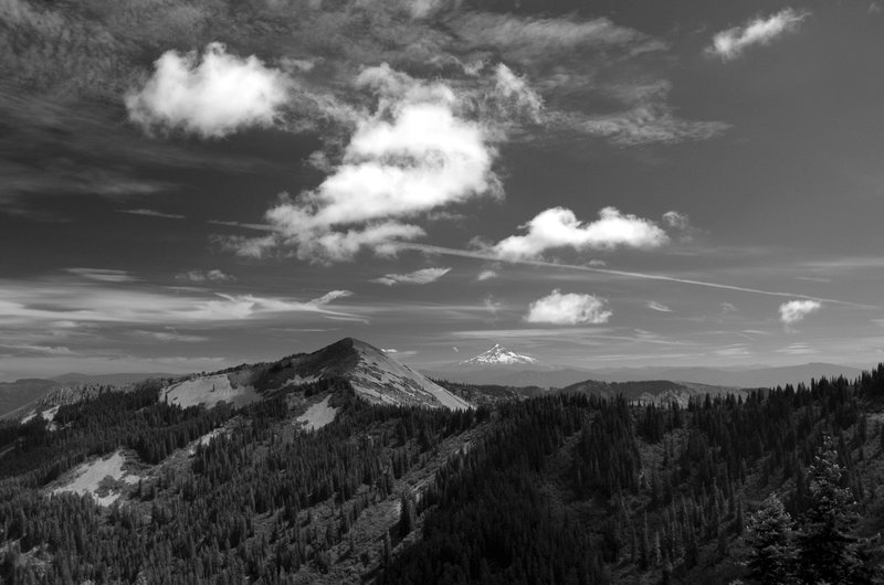 Little Baldy (foreground) and Mount Hood (horizon) from Silver Star Mountain