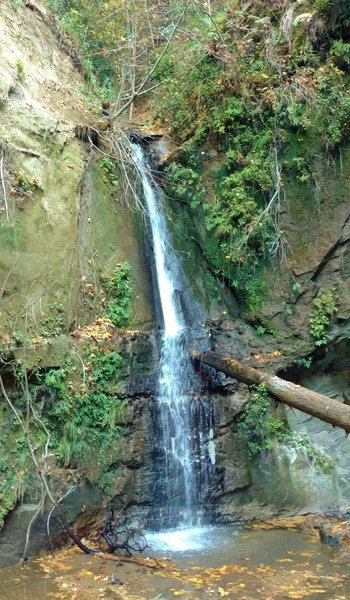 Maple Falls is at the end of Bridge Creek Trail