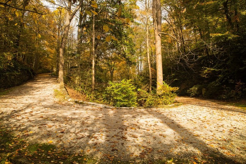 One of several gently graded switchbacking curves just outside the heart of Charleston