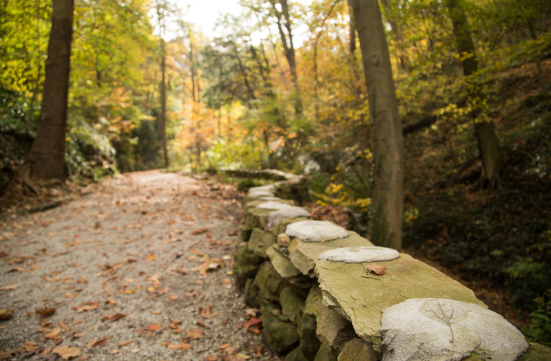 Concrete imprints of local leaves upon the century old craftsmanship lining the trail