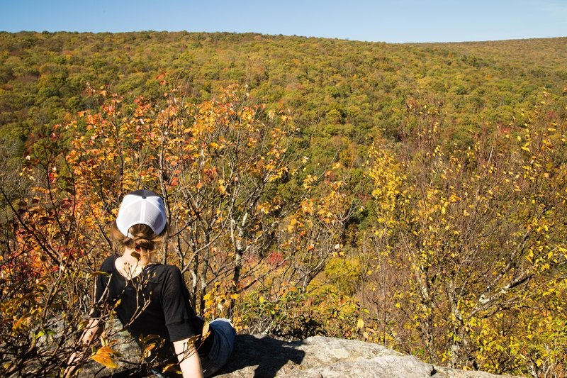 Soaking in the views of the Potts Mountain ridgeline at the War Spur Overlook